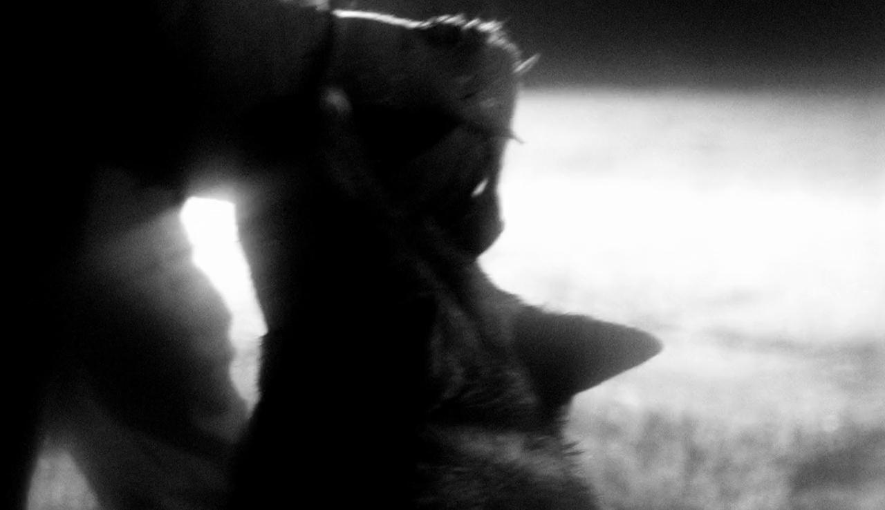 Apparat – Heroist (Matilda Finn)